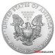 Monster Box - 2021 Silver American Eagles